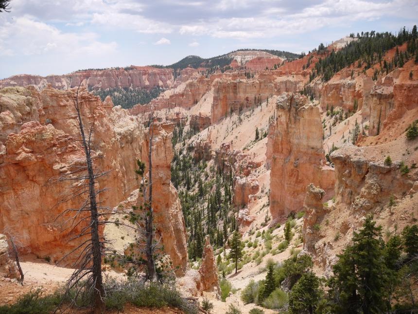 Black Birch Canyon.