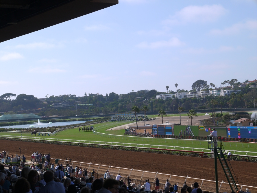This race has just started, on the turf infield, at the Del Mar Fairgrounds, Del Mar, California.