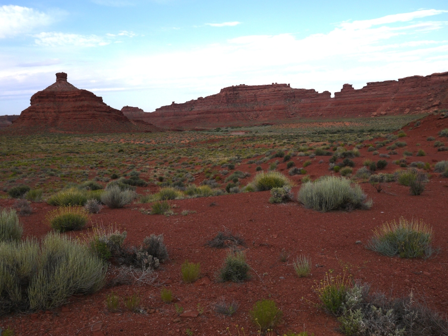 At the edge of the Valley of the Gods, near Highway 163. This area has served as a backdrop for western movies, commercials, and TV shows.