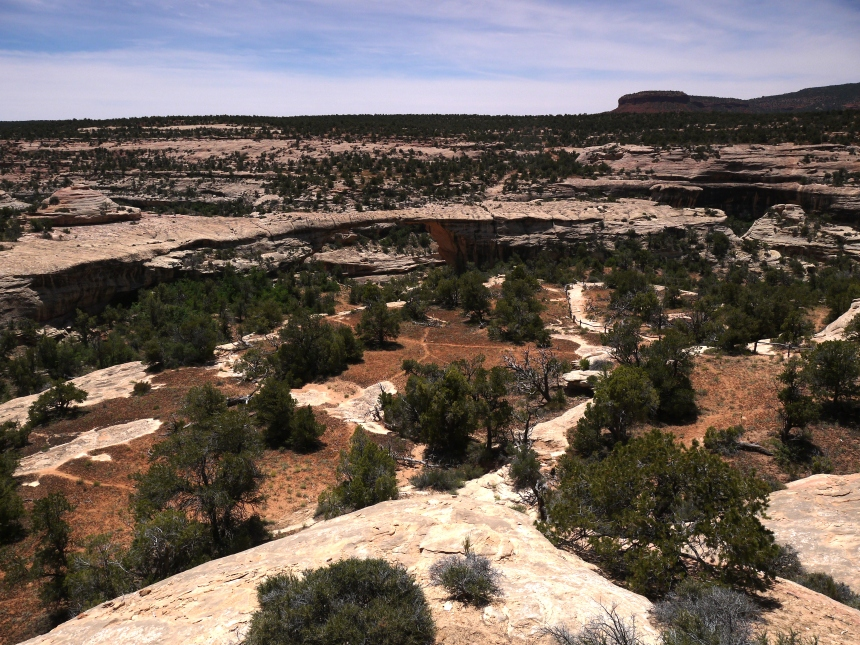 """Owachomo Bridge, Natural Bridges National Monument, Utah.  """"Owachomo"""" is Hopi for """"rock mound"""". The bridge is at the upper middle of the photo. And the eponymous rock mound is at the left abutment of the bridge."""