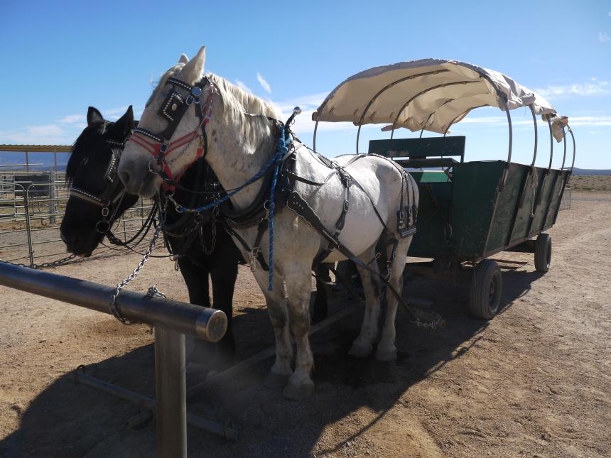 A waiting taxi, at Hualapai Ranch.
