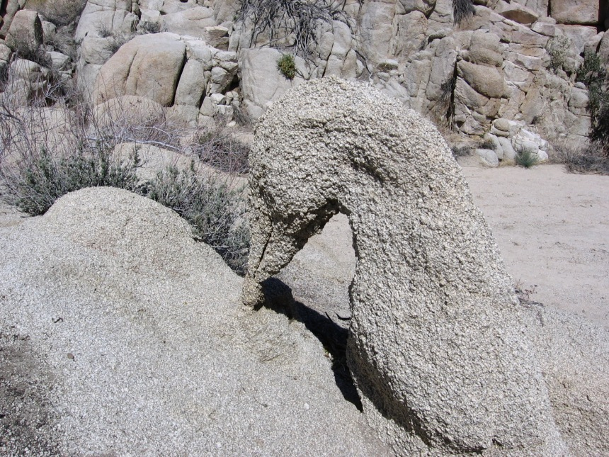 """It looks like a duck, but it doesn't walk like a duck. So it's not a duck. But I still call this """"Duck Rock"""". This sculpture is not for sale, as Mother Nature is a not-for-profit artist."""